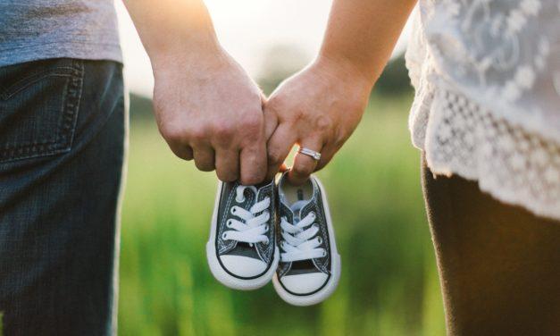 Zapytania o adopcję